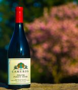 Cameron Winery 2014 Ribbon Ridge Pinot noir label