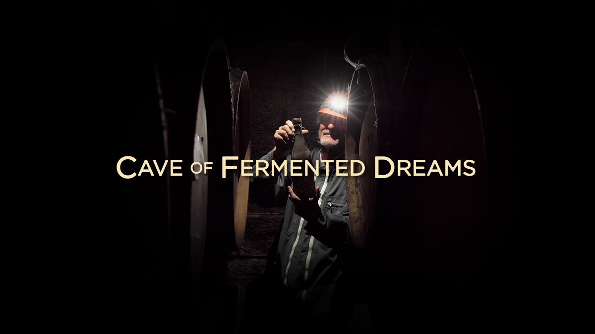 Cameron Winery: The Cave of Fermented Dreams (by Matt Giraud)
